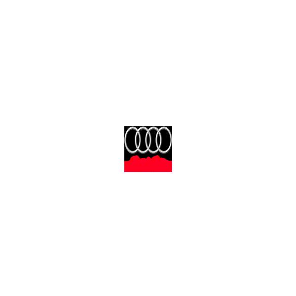 Audi 2.0 TFSI Siemens Simos19.2 ECM20TFS020XSCF