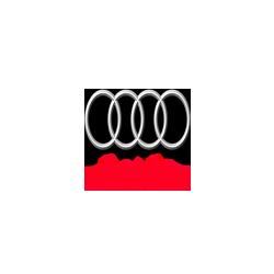 Audi RS7 4.0 TFSI MED17.1.1